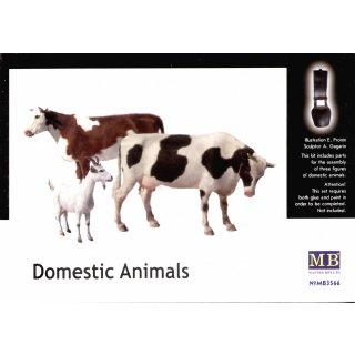 1:35 Domestic animals