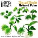 Papierpflanzen - Bismarckpalme